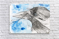 Illustration of a bird's eye and beak with mottled blue and white background  Acrylic Print