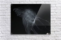 Glowing grey jellyfish in the dark water  Acrylic Print