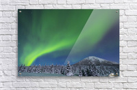 The aurora glows in the sky above Donnelly Dome and a snowy, moonlit landscape, south of Delta Junction; Alaska, United States of America  Acrylic Print