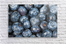 Close up shot of several fresh blueberries.  Acrylic Print