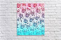 blooming rose pattern texture abstract background in pink and blue  Acrylic Print