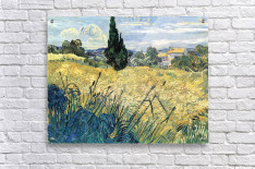 Green wheat field with cypress by Van Gogh  Acrylic Print