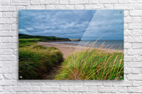 Sand and Grass  Acrylic Print