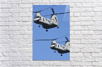 Two U.S. Marine Corps CH-46E Sea Knight helicopters in flight.  Acrylic Print