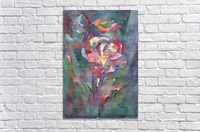 Rose blooming in the night  Acrylic Print