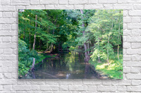 Holley Erie Canal Falls 3  Acrylic Print