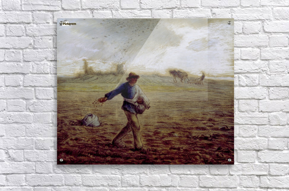 The Sower - Walters  Acrylic Print