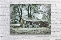 Abandoned Homestead  Acrylic Print