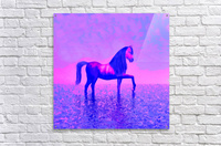lonely horse  Acrylic Print