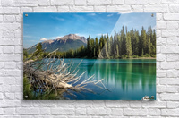 Summer Bow river  Acrylic Print