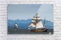 Tall ships sail on the Columbia River near Astoria; Oregon, United States of America  Acrylic Print