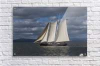 A large sailboat sails down the Columbia River; Astoria, Oregon, United States of America  Acrylic Print