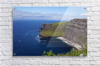 Cliffs of Moher, Ireland  Acrylic Print