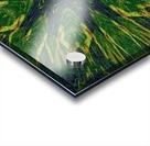 Green Flower 4 Acrylic print