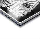 Mimetic Acrylic print
