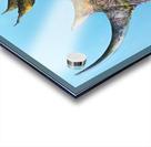 Illustration of a white rhinoceros against a blue background Impression Acrylique