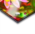 flowerPowerWILD Acrylic print