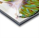 Fibonacci butterfly Acrylic print