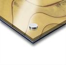 Lonoke, AR | Rice Levees  Acrylic print