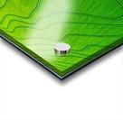 Carlisle, AR | Arkansas Rice Field Acrylic print