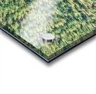 Lonoke, AR | Cover Crop  Acrylic print