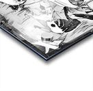 PicsArt_11 19 12.15.30 Acrylic print