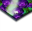 blooming rose texture pattern abstract background in purple and green Acrylic print