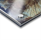 BLUEPHOTOSFORSALE 004 Acrylic print