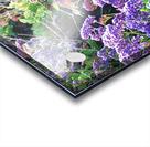 Purple Wild Flowers in Dana Point CA Acrylic print