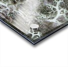 Bark With Lichen 02 Acrylic print