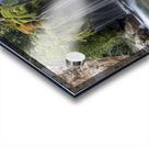 Capelli di Venere waterfalls Acrylic print