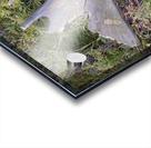 Moose antler Acrylic print