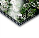 DazzleBlossoms Impression Acrylique