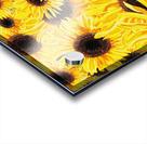 Sunflowers Field Watercolor Painting by Irina Sztukowski Acrylic print