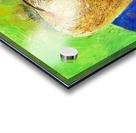 08.APPLE2014year oil on canvas 30X40 cm1500$ Acrylic print