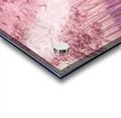 Pink Woods Acrylic print