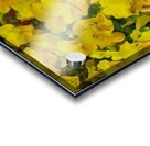 Yellow Abstract Floral Art Acrylic print