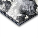 Print Art Photo Impression Acrylique