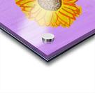 Sunflower. Annie F. Acrylic print