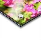 Flower39 Acrylic print