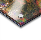 The Happy Totem Acrylic print