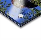 6AF0226F 3F57 451E BBD7 857C23AE1F8D Acrylic print