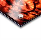 1542082644286 Acrylic print