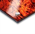 1542382712913 Acrylic print