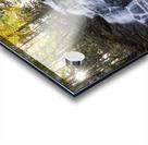 Trahlyta Waterfall Acrylic print