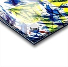 C4DC8FD6 19D4 49A3 B911 AB9C17B564A0 Acrylic print