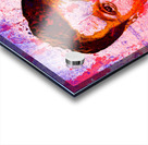 AL BUNDY Acrylic print