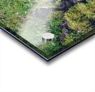 HDstudio.us 329 Acrylic print