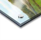 Swimming Hole Acrylic print