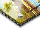 Conservation Land Acrylic print